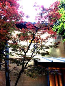 IMG 8922 225x300 - 高岡から金沢観光へ