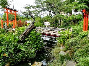 IMG 20180608 152933 300x225 - 「世界の中心で、愛をさけぶ」松崎町訪問記
